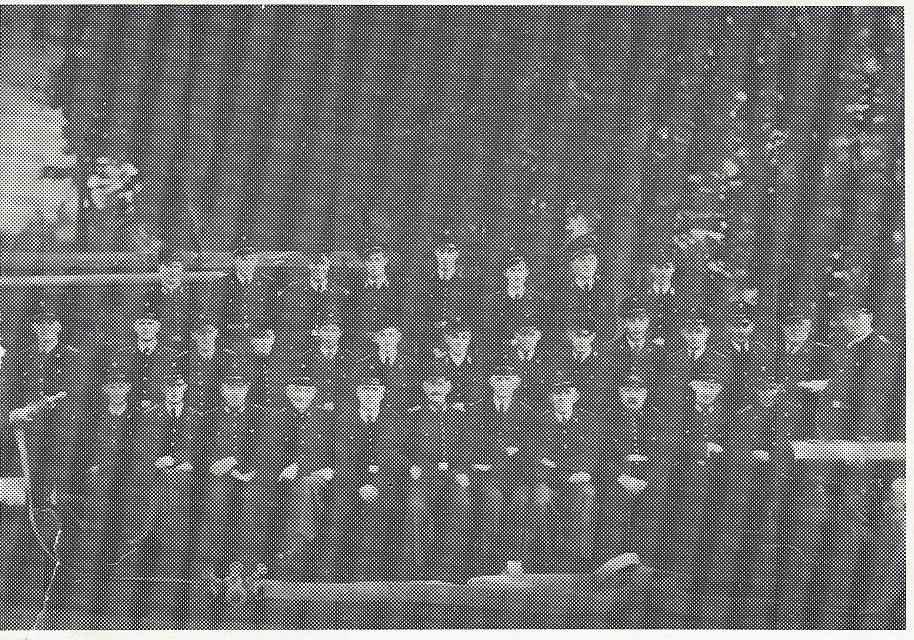Gruppenfoto der FF Elsten 1953